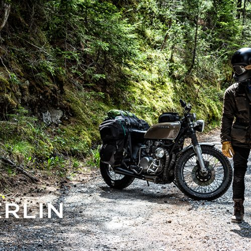 Merlin in the woods at Chas Mann Motorcycles